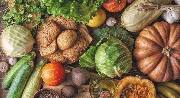 fibres nutrition sportive